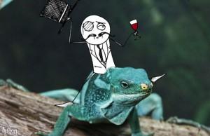 lulz-lizard-flickr-intro